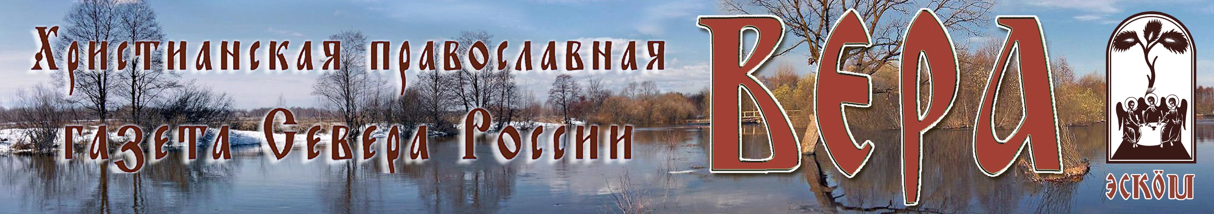 logo ezv